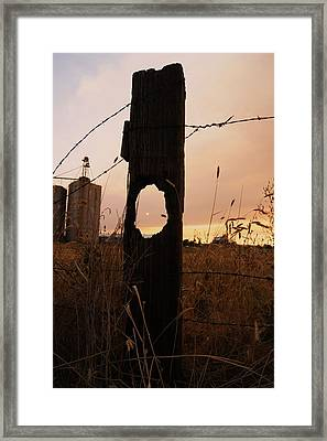 Knot Your Average Sunset Framed Print by Angi Parks