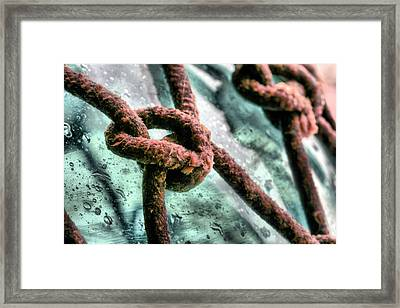 Knoticle Framed Print by JC Findley