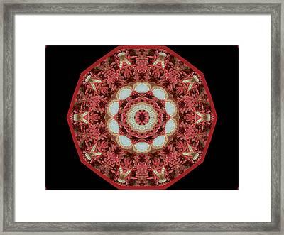 Knotty Twists Kaleidoscope Framed Print by Aliceann Carlton