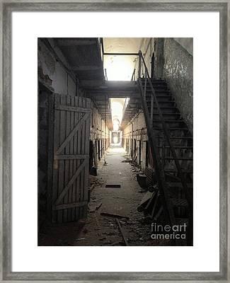 Knrn0403 Framed Print by Henry Butz