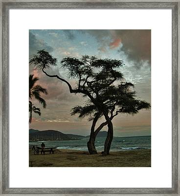 Knurled Tree And Resting Rider Framed Print