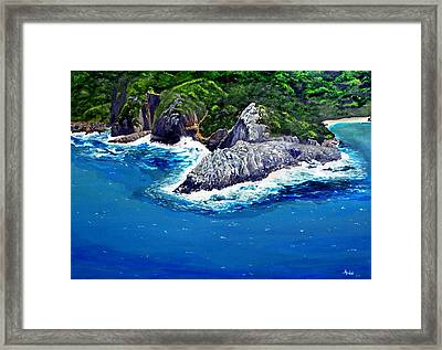 Knysna Heads Framed Print by Andre Pillay