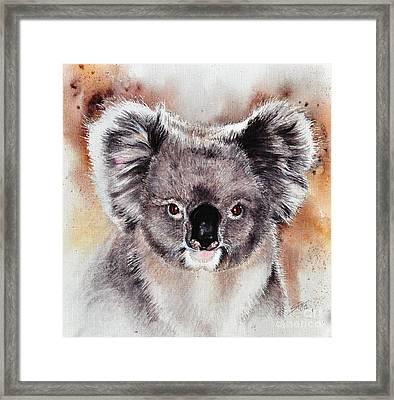 Koala  Framed Print by Sandra Phryce-Jones