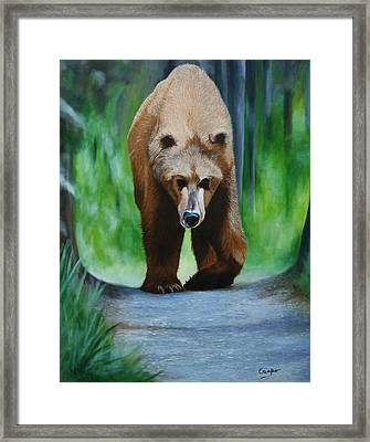Kodiak Framed Print by Jean Yves Crispo
