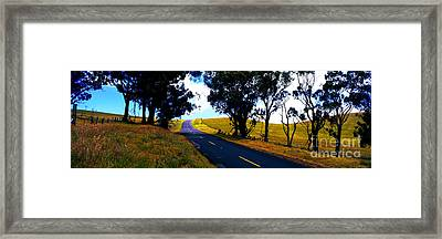 Kohala Mountain Road  Big Island Hawaii  Framed Print