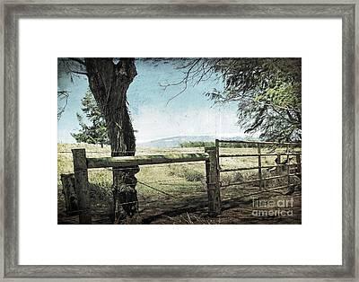 Kohala Ranch Framed Print by Ellen Cotton