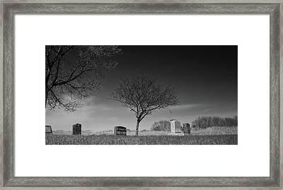 Kohanek Framed Print by Guy Whiteley