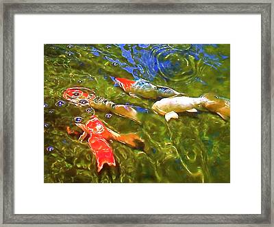 Framed Print featuring the photograph Koi 1 by Pamela Cooper