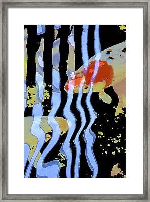 Koi 20 Framed Print