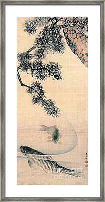 Koi And Pine Branch 1790 Framed Print by Padre Art