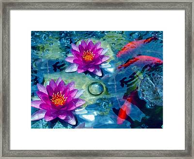 Koi And The Water Lilies Framed Print