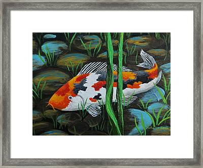 Koi Fish Framed Print by Katherine Young-Beck