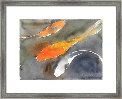 Koi Fish No.1 Framed Print