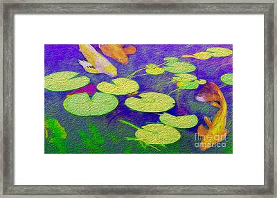 Koi Fish Under The Lilly Pads  Framed Print
