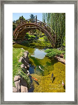 Koi Garden - Japanese Garden At The Huntington Library. Framed Print by Jamie Pham