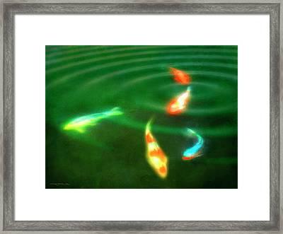 Koi Il Framed Print