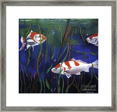 Koi In Reeds Framed Print by Tracey Hunnewell