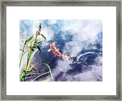 Koi In Swirling Water Framed Print