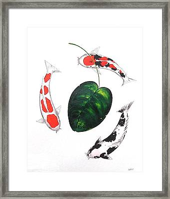 Koi Kohaku Doitsu Shiro Utsuri Doitsu Sanke And Lilly  Framed Print by Gordon Lavender