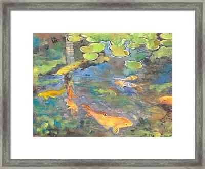 Koi Pond 1 Framed Print by Susan Powell