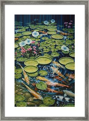 Koi Pond Framed Print by Larry Taugher