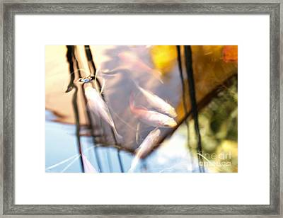 Koi The Symbol Of Love And Friendship Framed Print
