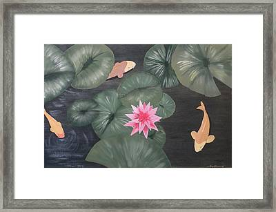 Koi Framed Print by Tim Townsend