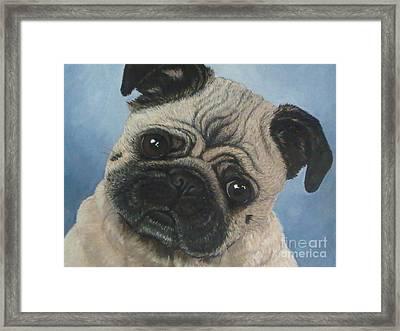 Koko Framed Print