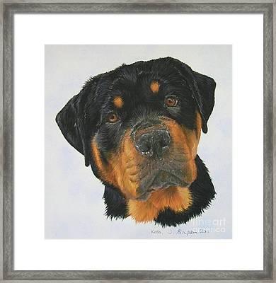 Kolo Framed Print by Joanne Simpson