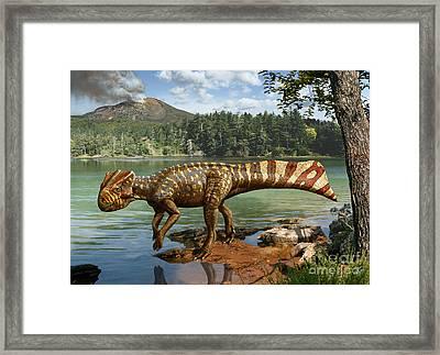 Koreaceratops Hwaseongensis Framed Print