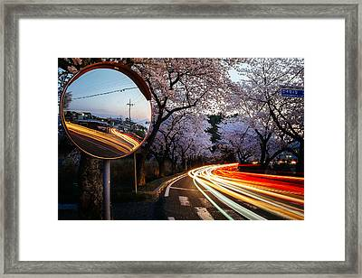 Korea's Roadside Blossoms Framed Print