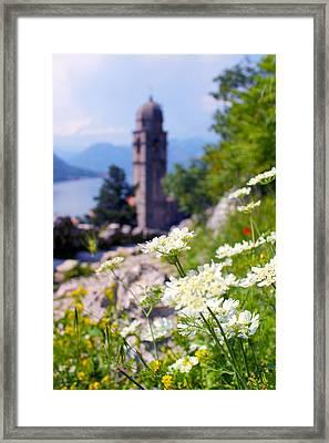 Kotor Wildflowers Framed Print by Saya Studios