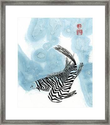 Krazy Koi Framed Print