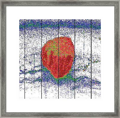 Krill Ball Framed Print by Sophie Fielding/pete Bucktrout, British Antarctic Survey