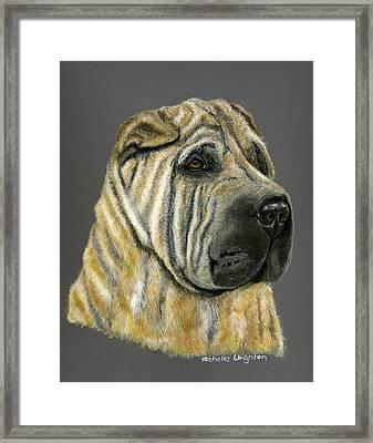 Kruger Shar Pei Portrait Framed Print by Michelle Wrighton