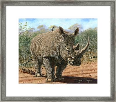 Kruger White Rhino Framed Print