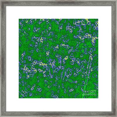 Kst Bias - 3 Framed Print