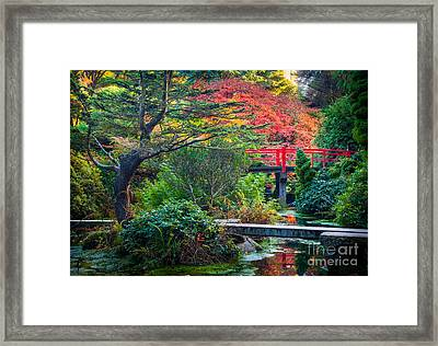 Kubota Gardens In Autumn Framed Print by Inge Johnsson