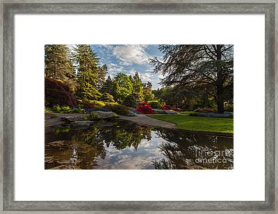 Kubotas Garden Vision Framed Print