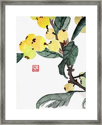 Kumquats  Chinese Watercolor Painting Framed Print