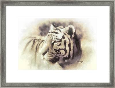 Kwaai Framed Print