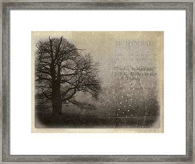 L Arbre De Vie - 33d02 Framed Print by Variance Collections