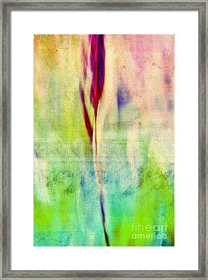 L Epi - S14at01 Framed Print by Variance Collections