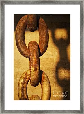 L I N K S Framed Print by Charles Dobbs