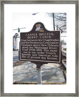 La-017 Cannes Bruless Burnt Canes Framed Print
