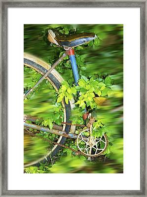 Framed Print featuring the digital art La Bici Di Nonna by Sandro Rossi