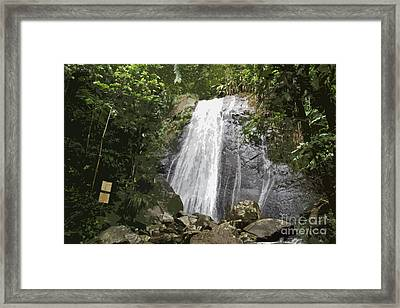 La Coca Falls El Yunque National Rainforest Puerto Rico Print Cutout Framed Print