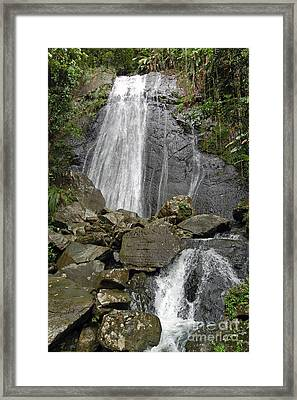 La Coca Falls El Yunque National Rainforest Puerto Rico Prints Framed Print by Shawn O'Brien