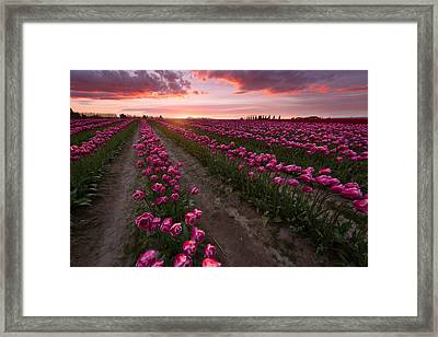 Framed Print featuring the photograph La Conner by Bernard Chen