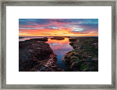 La Jolla California Reflections Framed Print by Larry Marshall